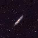 NGC253 - Sculpter Galaxy (HaLRGB),                                Nick's Astrophotography