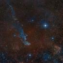 IC 2118 - The Witch Head Nebula,                                David McGarvey