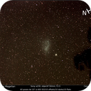Petit nuage de Magellan,                                nzv