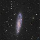 NGC247,                                Philippe BERNHARD