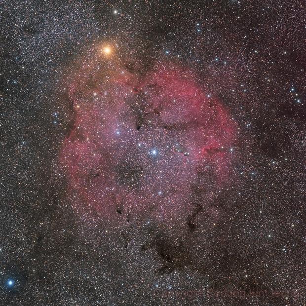 IC1396 Emission Nebula in Cepheus,                                Byoungjun Jeong