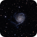 The Pinwheel M101,                                Richard S. Wright Jr.