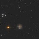 NGC3184,                                Bert Scheuneman