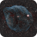 The Dolphin Head Nebula (Sh-2 308),                                Peter Dunsby