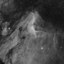 IC 5067 The Pelican Nebula,                                Wes Higgins