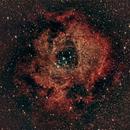 NGC2244,                                Jay Crawford