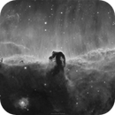 IC434  Horsehead  Nebula  sho,                                Sylvain Lefebvre