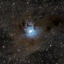 NGC 7023 - Iris Nebula,                                Darius Kopriva