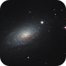M63 / NGC5055,                                bilgebay