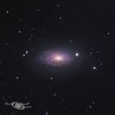 M63 - The Sunflower Galaxy,                                David Schlaudt