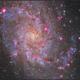 M33  Lum_Ha_Colour,                                sky-watcher (johny)