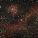 IC 2177 The Seagull Nebula,                                Michael Heimbach