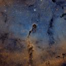 IC1396 ELEFANT,                                jose miguel
