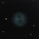 M 97 Owl Nebula,                                Michael Timm