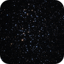 NGC3532 in Carina - Wishing Well Cluster,                                Marcelo Alves