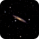 NGC 253 - Sculptor Galaxy,                                Dave