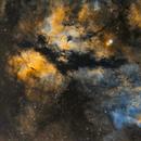 Gamma Cygni Nebula - 1x2 Mosaic in Narrowband,                                Brad