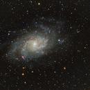 M33 The Triangulum Galaxy ,                                Eric Kallgren