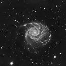 M101_L,                                edomtset