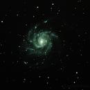 M101,                                adamyoder