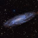 NGC4236,                                Mark Holbrook