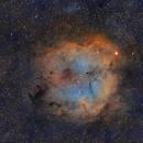 Elephant's Trunk Nebula IC1396,                                Carastro