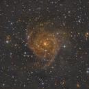 IC342,                                jamchur
