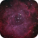 Rosette Nebula - Caldwell 49,                                antonenright
