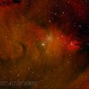 NGC2264 The Christmas Tree Cluster,                                David Hunt