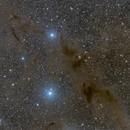 Barnard 228 - The Dark Wolf Nebula,                                Darius Kopriva