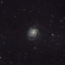 M101 Pinwheel Galaxy,                                Wallnut