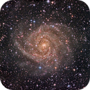 The Hidden Galaxy (IC 342),                                KuriousGeorge
