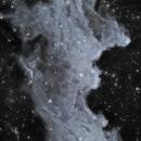 IC2118 - Witch Head Nebula (Xmas Leftovers!),                                Paddy Gilliland