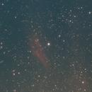California Nebula,                                Eduardo Castro