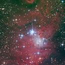 NGC2264,                                Benjamin Grundmann