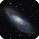 M106 and Friends,                                Norman Revere