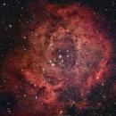 NGC 2237 (C 49) Rosette Nebula,                                brad_burgess