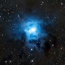 Iris Nebula - NGC 7023 - Crop,                                Greg Polanski