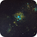 NGC 1763 in HST Palette ,                                David Nguyen