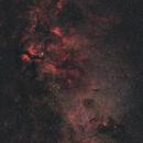 Cygnus,                                Gabriel Siegl
