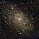 Triangulum Galaxy - November 24, 2014,                                Chappel Astro