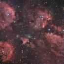 NGC 6334 - Cat's Paw Nebula,                                Martin Junius