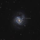 M61 + SN2020jfo,                                Robert Eder