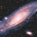 M31 - The Andromeda Galaxy,                                Jason Wiscovitch