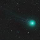 Cometa Lovejoy 2014,                                Alessandro Curci