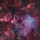 Tarantula Nebula NGC2070,                                Jonathan Durand