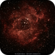 Rosette Nebula,                                Svennie46