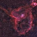IC 1805 Nebulosa del Corazón,                                Carlos Ledesma