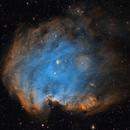 The Monkey Head Nebula in the Hubble Palette,                                Alex Roberts