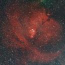 Cone Nebula Region NGC2264,                                Michael Mantini